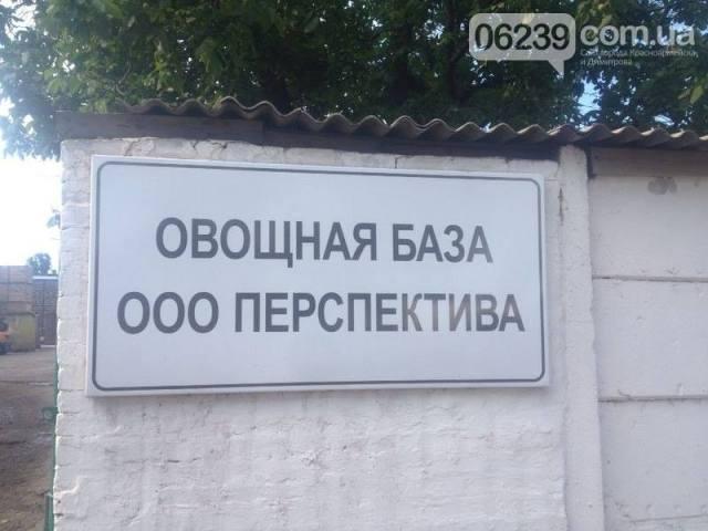 dobrop1